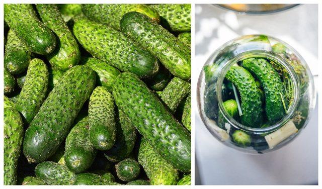 Nejlepší recept na kyselé okurky: Přirozená chuť BEZ KONZERVANTŮ a vydrží vám celou zimu !